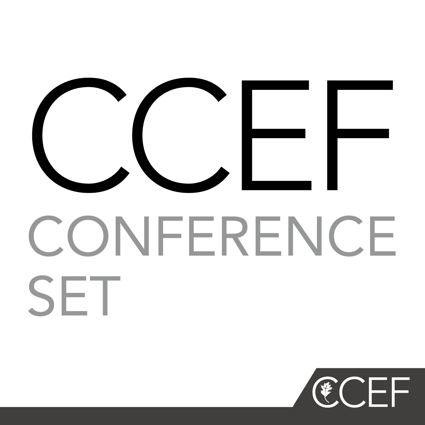 CCEF CONFERENCE AUDIO SET